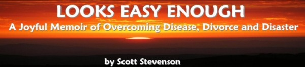 MEMOIR OVERCOMING DISEASE, DIVORCE & DISASTER